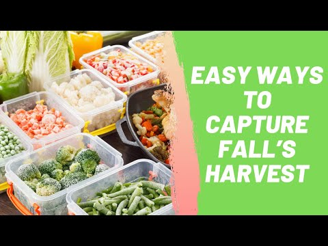 Easy Ways to Capture Fall's Harvest
