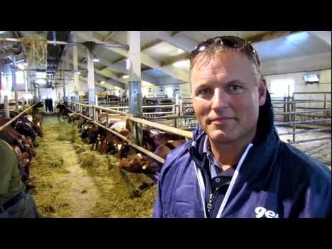 ABS Sales Manager visiting Norwegian Red dairy farm, Norway
