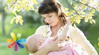 Как сохранить красивую грудь после беременности - Все буде добре - Выпуск 465 - 22.09.2014