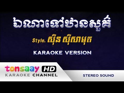 ឯណាទៅឋានសួគ៌ ភ្លេងសុទ្ធ ស៊ីន ស៊ីសាមុត - Tonsaay Karaoke - Musical Instruments