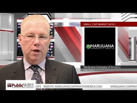Marijuana Company of America