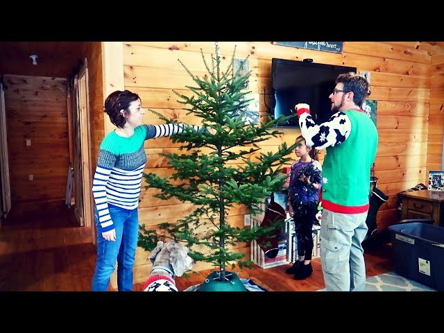 Watch this Before you buy a Christmas Tree | Our Charlie Brown Christmas Tree on the Homestead
