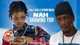 Fully Bad, Spring Wata - Nah Badmind Yuh [Audio Visualizer]