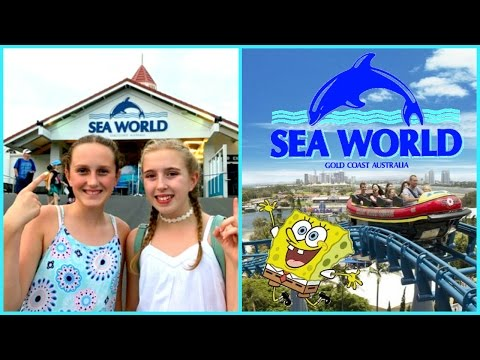 Theme Park Fun! A Day Out At Sea World  Gold Coast Australia - Vacation Vlog