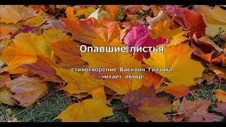 ''Опавшие листья'' (стихотворение В. Гаазова)