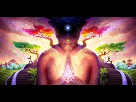 Timothy Leary introduces a Terence Mckenna Lecture 'unfolding the stone'
