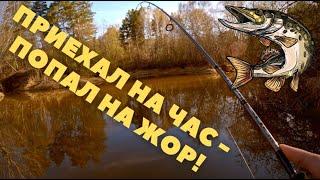 ЖОР ЩУКИ на очень красивой микроречке Рыбалка на ультралайт спиннинг весной 2021 года
