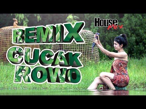 CUCAK ROWO REMIX