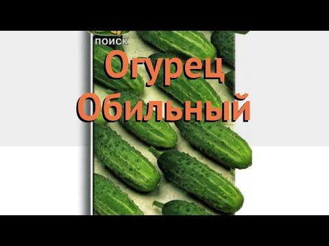 Огурец обыкновенный Обильный (obilnyy) 🌿 огурец Обильный обзор: как сажать семена огурца Обильный