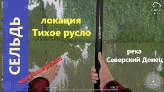 Русская рыбалка 4 река Северский Донец Сельдь на мели