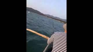 Рыбалка на Гоа. Палолем.13.02.2016(, 2016-02-17T23:48:25.000Z)