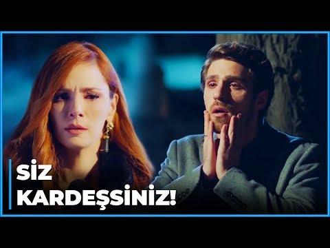 Şeniz, Nedim ve Cenk'in KARDEŞ Olduğunu İtiraf Etti! | Zalim İstanbul 21. Bölüm