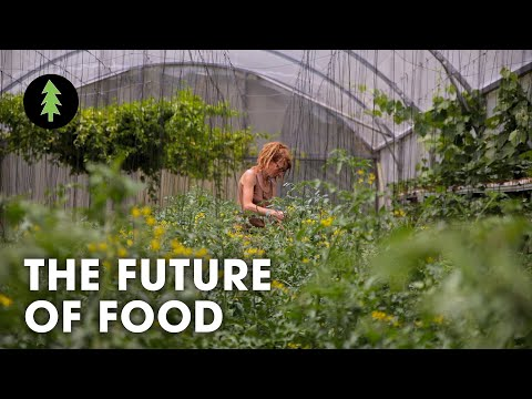 Organic Sustainable Farming is the Future of Agriculture - T