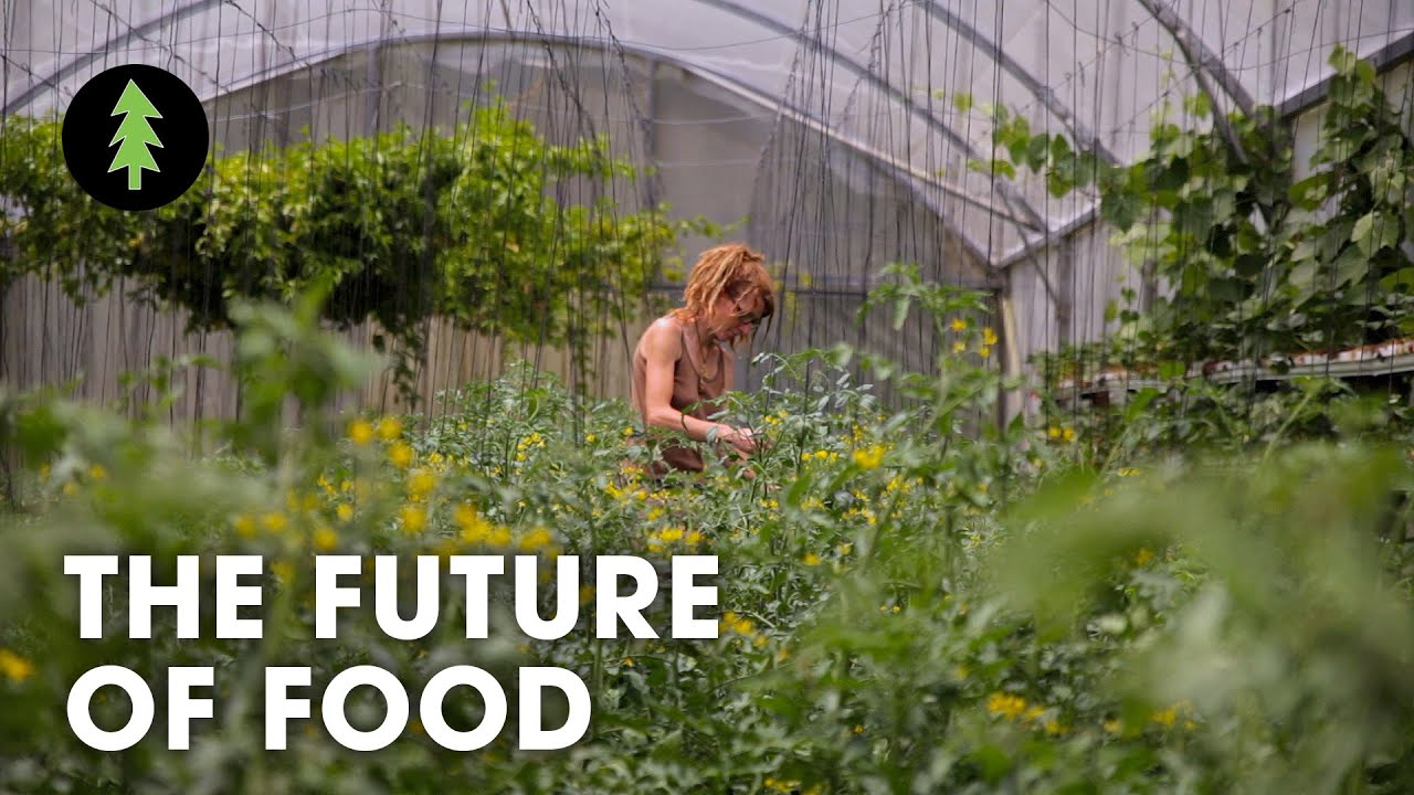 Sustainable Farmer Organic Sustainable Farming Is The Future Of Agriculture The Future Of Food