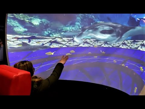 AQUA - An Immersive Ride Experience At ISE 2020 - 180 Degree Projected Virtual Reality - DepthQVR