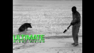 Trijicon REAP-IR Thermal Night Hunting | Feral Hog Eradication & Predator Hunting