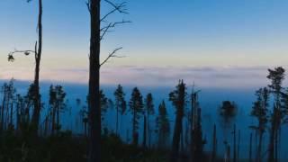 Топ 5 Весёлых Молдавских Песен