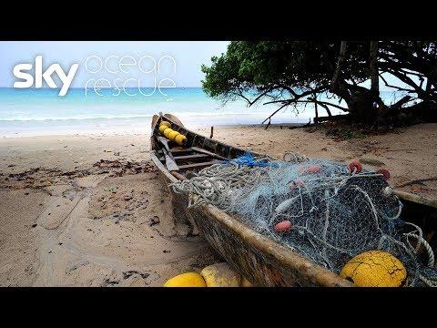 The Blue Economy: Over Fishing Is Threatening Paradise