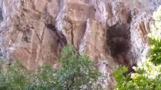 Kayaların  altından  fiskirarak  çıkıyor
