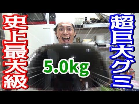 総重量5.0kg!超巨大グミを作って食べるぞ!!