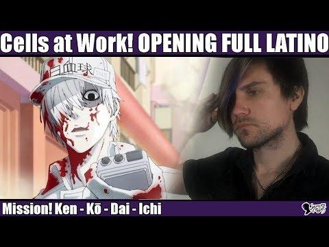 Hataraku Saibou Opening Full Latino 「Mission! Ken・Kou・Dai・Ichi」#136