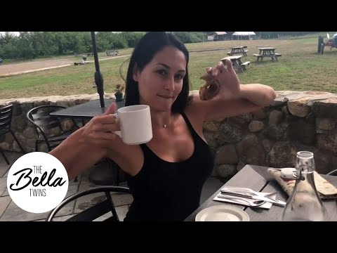 YUMMY! Nikki raves about fresh donuts and coffee in New Hampshire! 🍩☕