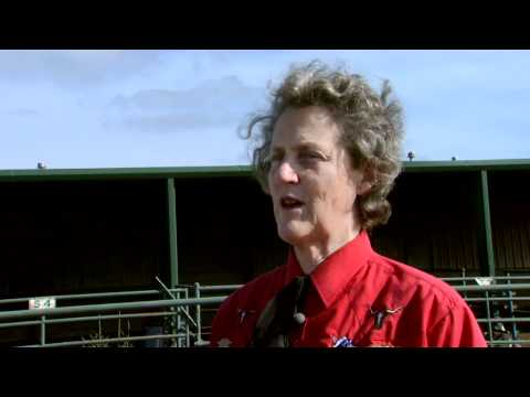 Animal Behavior with Temple Grandin - Part 1