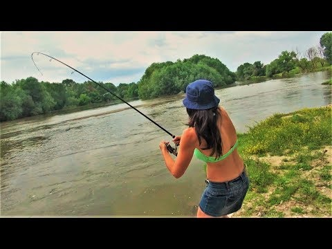 BEST FISHING In The World: Catfish, Pike, Asp, Zander. Bulgaria P.1