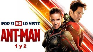 Por si no lo viste: Ant-Man (and the Wasp)