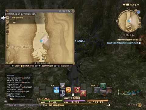 Final Fantasy XIV FFXIV CRP Carpenter Ireland Eire Old Gridania Gawking At The Map 30.06.16