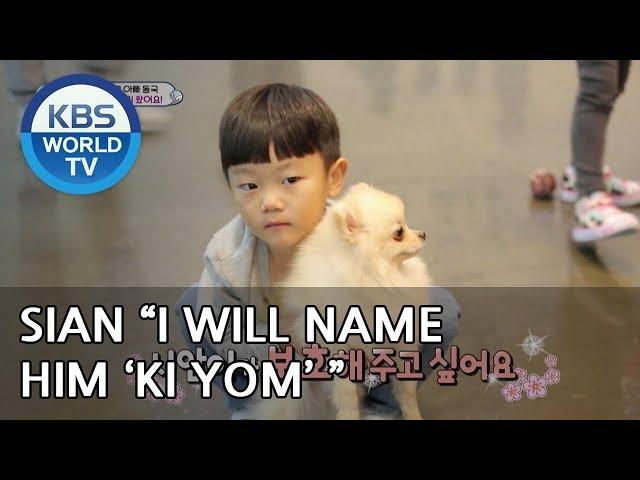 SIAN wants to protect 'Ki Yom' [The Return of Superman/2018.12.23]