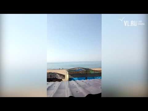 VL.ru - во Владивостоке снова тралят дно на Шаморе