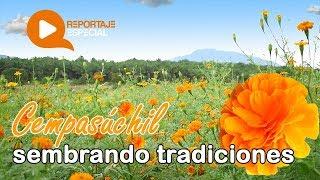 Cempasúchil: sembrando tradiciones | Reportaje Especial Coatza Digital