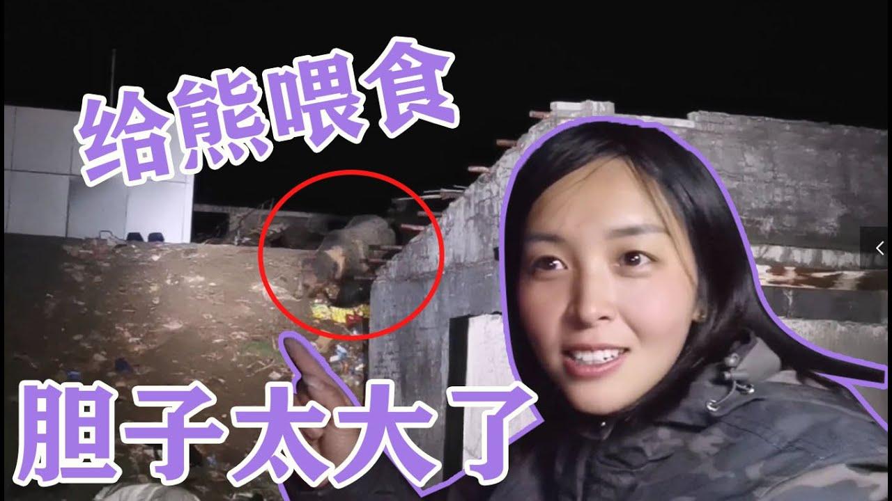 自駕西藏扎營唐古拉山兵站,給野生熊喂食物,美女胆子太大了
