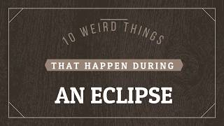 10 Weird Things That Happen During An Eclipse