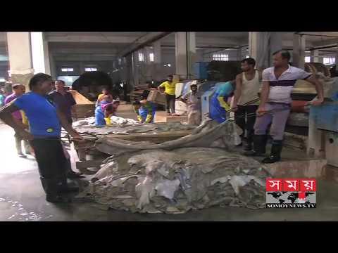 যে কারণে রপ্তানি বাজারে বারবার হোঁচট খাচ্ছে বাংলাদেশ | Leather Industry