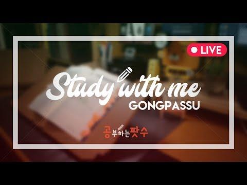 Merrily! STUDY WITH ME : 17.11.22. LIVE STREAM - 공부하는팟수 -