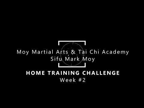 Week 2 - Moy Academy - Home Kung Fu Challenge