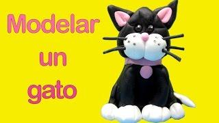 Modelar Con Masa Elástica Un Gato