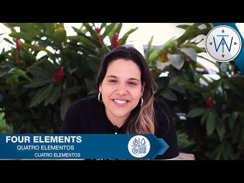 # 2 Traveling the World - Four Elements