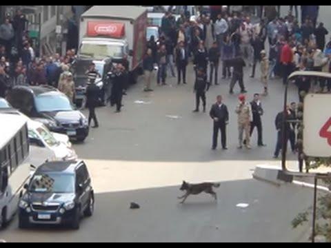 شاهد ' الكلب البوليسى ' اللى كشف الاعيب الاخوان فى وسط البلد