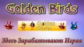 Golden Birds Заработок в интернете - Заработай на своих яйцах
