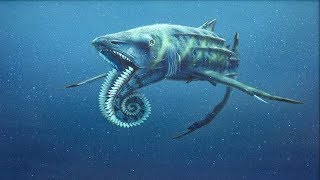 Самые опасные животные океана.Морские глубины. Документальный фильм HD