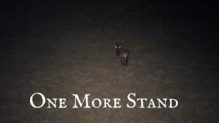 One More Stand Episode Hang Up Dog's - Coyote Hunting