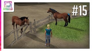 Riding Academy 2 (part 15) (Horse Game)