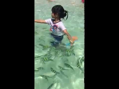 """มีนาเที่ยวทะเลภูเก็ต """"Phuket"""""""