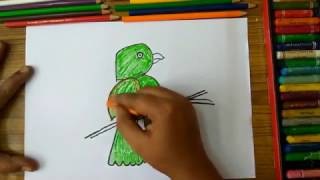 "How to draw parrot from alphabet ""P"" step by step very easily for kids"