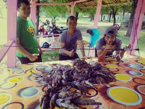Strike bertubi - tubi | Ultra Light Fishing Lampuuk Banda Aceh