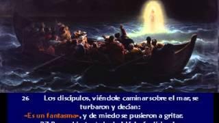 Evangelio San Mateo 14, 22 33