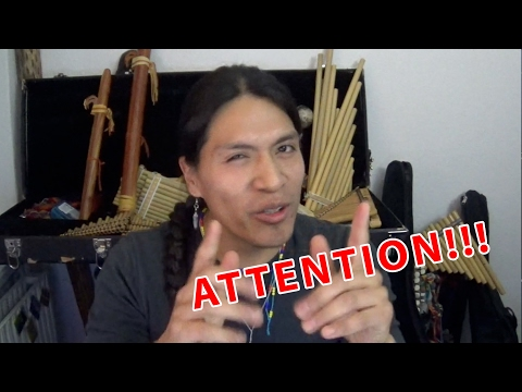 Attention Attention - Leo Rojas Nature Spirits